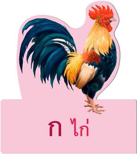 การ์ดหนูชอบอ่าน ก ไก่
