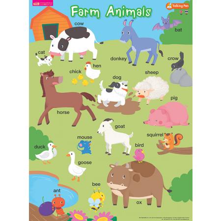 โปสเตอร์พลาสติก - Farm Animals