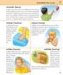 Encyclopedia สารานุกรมประกอบภาพ สำหรับเด็กและผู้สนใจทั่วไป (ฉบับปรับปรุง)