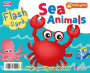 Flash Card - Sea Animals