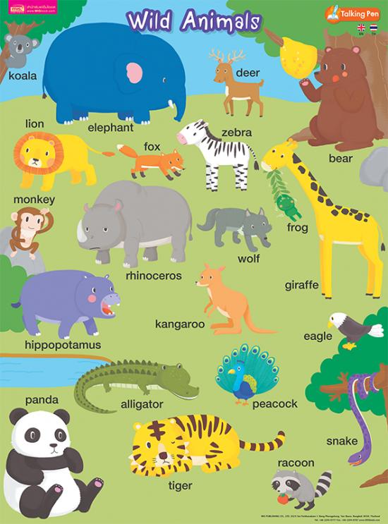 โปสเตอร์พลาสติก - Wild Animals