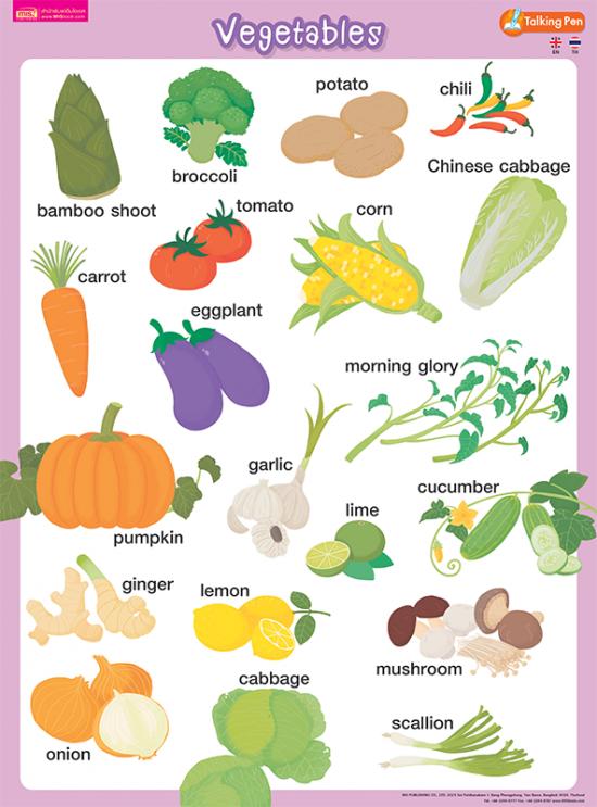 โปสเตอร์พลาสติก Vegetables