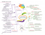 Science Map สรุปเนื้อหาวิทยาศาสตร์ ระดับมัธยมต้น